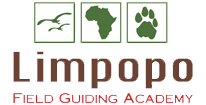 Limpopo Field Guide Training Academy Logo