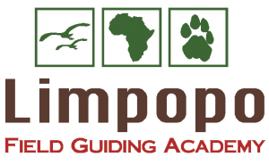 Limpopo Field Guiding Academy