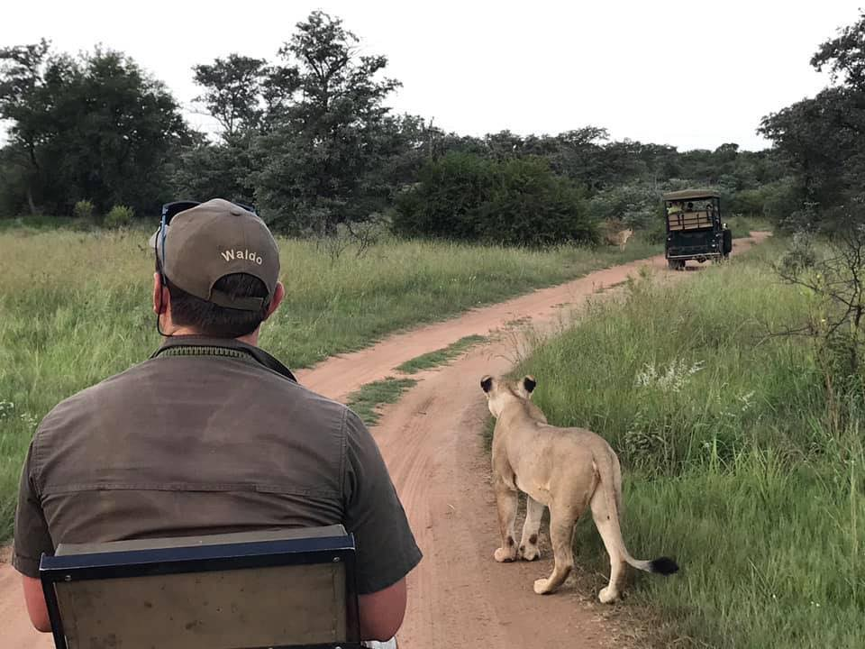 safari guide training