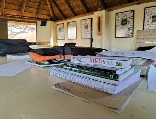 Limpopo Field Guiding Academy, my first impressions.